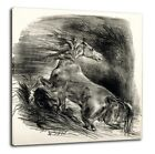 Eugene Delacroix - Cheval sauvage 1828 Poster Canvas Print 8