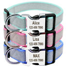 Bling Bling Dog Collar Quick Fit Nylon Personalised Pet Dog Puppy Name ID Collar