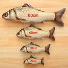 Realistic Fish Cat Funny Crazy Toy Catnip Pet Scratching Chewing Toys Xmas Gift