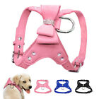 Suede Leather Step-in Dog Harness Rhinestone Studded Dog Vest Harness for Yorkie
