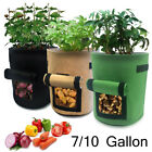 7 / 10 Gallon Potato Planting Grow Bag Fabric Pot Planter Vegetable Container