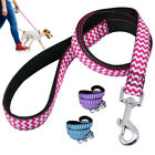 Nylon Dog Lead Durable Pet Puppy Training Walking Lead for Beagle Jack Russell