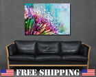 Flowers Raindrops Dew Print Pink Blue Spikey Canvas Art Living Room Home Bedroom