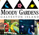 MOODY GARDENS VALUE TICKET PASS SAVINGS A PROMO DISCOUNT TOOL