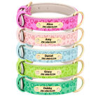 Leather Personalized Dog Collar with Heart Printing Heavy Duty Engraved ID Tag