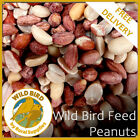 Bird Whole Peanuts - Quality Fresh Feed for Wild Birds Garden