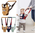 Kyпить Baby Walker Toddler Safety Belt Harness Assistant Backpack Walking Learning Wing на еВаy.соm