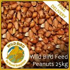 Bird Whole Peanuts 25KG - Quality Fresh Feed for Wild Birds Garden
