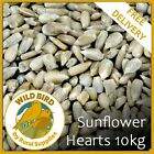 Sunflower Hearts Wild Bird Feed 10KG - NO MESS PREMIUM ALL YEAR ROUND SEED