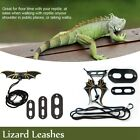 Leather Reptiles Pet Leashes Collar Dinosaur for Lizard Crocodile Squirrel Cat-