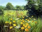 Landscapes Painting By Numbers Kits Includes Paints Brush Board Nature