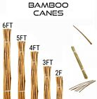 Durable Heavy Duty Bamboo Canes Strong Thick Plant Flower Support Stick 2FT-6FT