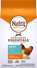 Dry Cat Food Nutro Wholesome Essentials Indoor Sensitive Digestion Chicken