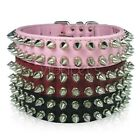 Spiked Dog Collar Leather Spikes Medium Large 4 colors