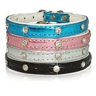 Rhinestone Dog Collar Cat Collar pink blue silver black