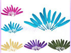 50pcs goose feather 4-6in 10-15cm Beautiful arts crafts Hat adorn optional color