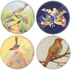 Garden Birds Glass Pocket Purse MIRROR Retro Robin Christmas Stocking Filler