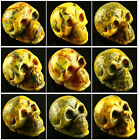 F913 Carved Crazy lace agate skull figurine