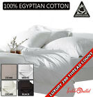 Luxury 100% Egyptian Cotton 200 Thread Count Fitted Sheets Single,Double,King