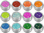 Glamour Irisierend Glitter Powder Puder Nailart Gel Nails Modellage