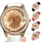 Women's Owl Cute Bird Pattern Crystal Analog PU Leather Rose Gold Wrist Watch