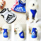 Blue Pet Clothes  Sweet Dog Cat Coat Cotton + 1 Navy Blue bowtie