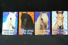 HORSES 3D DIMENSION SMALL SIGNS HORSE LOVER LIVES HERE HORSE SIGN 4 DESIGNS