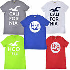 Hollister Mens Tshirt Graphic Crew Neck Hco Dudes New V524