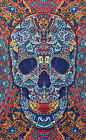 3D- SKULL-30 X 45 or 60 X 90 TAPESTRY-BEDSPREAD-Psychedelic W/ GLASSES Grateful