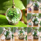 Handmade Nature Dried Flower Sea Grasses Glass Wishing Bottle Necklace Chain Hot