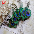 Wholesale 10-100PCS beautiful 2-30cm/2-12inches Handmade peacock feather eyesDIY