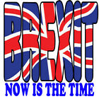 Brexit T-Shirt Now IS The Time European Exit Europe Vote 3XL 4XL 5XL Quit Euro