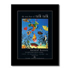 TALK TALK - Natural History: The Very Best Of Matted...