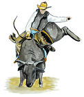 Bull Rider Country Cowboy Rodeo Vinyl Decal Sticker - Auto Car Truck RV Cup Boat