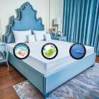 A+ Bed Bug Proof ENCASEMENT PROTECTOR Soft LUXURIOUS Zipper MATTRESS or Pillow  image