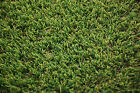 Tough Lawn Off Cuts Various Sizes 4m width rolls