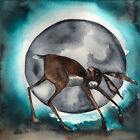 MOON HARE rabbit  PRINT SQUARE DEEP FRAME CANVAS  -  limited edition D Barker