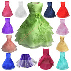 Flower Girl Birthday Wedding Bridesmaid Kids Pageant Formal Gown Dresses Toddler