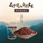 Organic Wild Dried Wu Wei Zi Schisandra Chinensis Tonic Five Flavours Fruit Herb