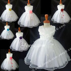 NLW4 Flower Girls Wedding Christening Holy Communion Formal Pageant Gown Dress