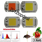 20W 30W 50W full spectrum 380-840nm white/warm LED COB Chip 110 220V Smart IC