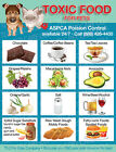TOXIC FOODS Poison for Pets Dogs Cats Emergency ICE Refrigerator Fridge Magnet