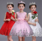 New Little Kid Princess Flower Girl Dress Lace Wedding Party Prom Pageant Clothe