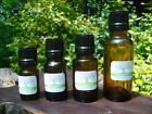 Peppermint Essential Oil - 100% Pure, Natural All Sizes Bulk