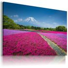 PURPLE FIELD  , View Canvas Wall Art Picture Large SIZES  L171  X
