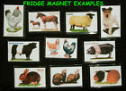 FRIDGE MAGNET SHEEP BREEDS 1 to 20