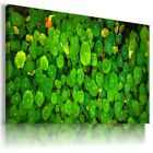GREEN YELLOW LEAF ABSTRACT MODERN CANVAS WALL ART PICTURE LARGE SIZES AZ40 X