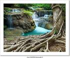 Banyan Tree And Limestone Waterfalls Art Print Home Decor Wall Art Poster - C