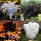 Fashion beautiful 10-500pcs ostrich feathers 12-14inches/30-35cm white and black