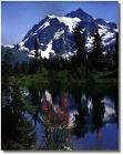 Snowcapped Mountain With Treed Forrest & Lake,Mt.Shuksan Wall Art Print Picture